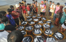 Nelayan Kesusahan Jual Ikan, Tengkulak Pilih-Pilih - JPNN.com