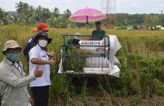 Penyuluh Pertanian Dampingi Petani Panen dengan Alsintan pada Masa Pandemi - JPNN.com