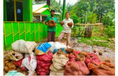 Balai TN Bantimurung Bulusaraung Mengembangkan Umbi Porang untuk Kelompok Tani Hutan - JPNN.com