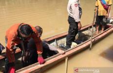 Devi Berenang, Tiba-tiba Tangannya Ditarik Buaya ke Tengah Sungai - JPNN.com