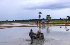 Penyuluh dan Petani Kutai Timur Mempercepat Tanam di Tengah Pandemi Covid-19 - JPNN.com