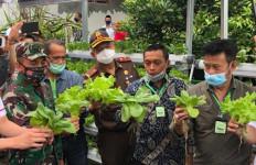 Tanami Pekarangan, Mentan SYL: Sumber Pangan, Menambah Pendapatan - JPNN.com