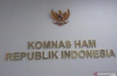 Komnas HAM Klaim Profesional Dalam Penyelidikan Kasus Paniai - JPNN.com