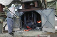 Prof Zaki Dukung Program Hilirisasi Mineral - JPNN.com