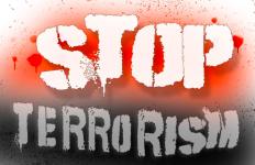 Cabut Segera Draf Perpres tentang Pelibatan TNI Berantas Terorisme - JPNN.com