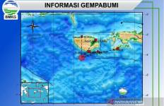 Gempa Menggoyang Selatan Pulau Buru, Ambon pun Bergetar - JPNN.com