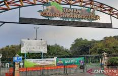 Kebun Binatang Ragunan Dibuka Lagi, Kecuali untuk Pengunjung Ini - JPNN.com