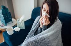 Benarkah Menaruh Bawang Bombai di Ruangan Bisa Mengatasi Flu? - JPNN.com