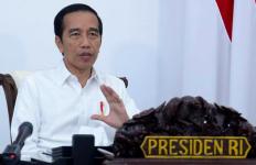Prediksi Terbaru dari Presiden Jokowi soal Puncak Pandemi Corona di Indonesia - JPNN.com