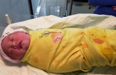 Bayi Perempuan Masih Bertali Pusar Ditemukan di Samping Kandang Ayam - JPNN.com
