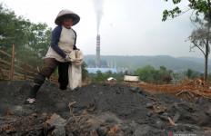 Pupuk Batu Bara Asal Indonesia Dapat Pengakuan di Amerika - JPNN.com