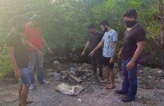 Penganiaya Hewan di Bali Ditangkap - JPNN.com
