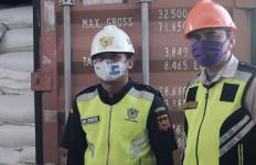 Strategi Bea Cukai dan Karantina Dorong Perekonomian saat Pandemi - JPNN.com