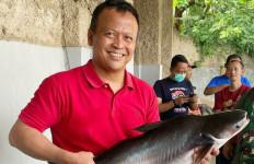 Kalangan Pengusaha Nilai Edhy Prabowo Menteri Penuh Solusi - JPNN.com