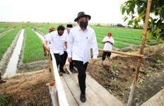 Dunia Terancam Kelaparan, Menteri Teten Dorong Penguatan Koperasi Pangan - JPNN.com