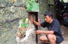 Dikira Suara Kucing, Ternyata Ada Sosok Lain Masuk ke Rumah - JPNN.com