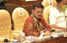 Komisi IV DPR RI Apresiasi Penelitian Eucalyptus Kementan - JPNN.com
