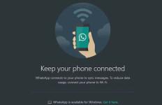 Cara Mudah Mengaktifkan Fitur Dark Mode di WhatsApp Web - JPNN.com