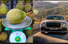 Pecinta Durian Pasti Kesal Baca Berita Ini, yang Sabar ya - JPNN.com