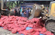 Bea Cukai Kuala Langsa Musnahkan 2,06 Ton Bawang Merah Ilegal - JPNN.com