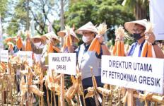 Ikhtiar Rahmad Pribadi Lakukan Transformasi Bisnis Petrokimia Gresik - JPNN.com