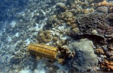 Miris, Terumbu Karang di Pulau Ini Terancam Rusak Total - JPNN.com
