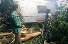 Sopir Diduga Mengantuk, Bus Pusaka Tabrak Pohon dan Terbalik di Aceh Timur - JPNN.com
