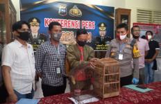 Jual Burung Langka di Medsos, Guru Honorer Ini Kaget, Pembelinya Ternyata Polisi - JPNN.com