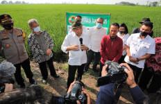 Kunjungi Indramayu, Menteri Teten Serahkan Program Restrukturisasi Pinjaman untuk KSP - JPNN.com