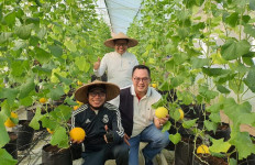 Kunjungi IPB, Muhaimin Gelorakan Penguatan Pertanian untuk Hadapi Krisis - JPNN.com