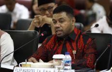 Quo Vadis Penegakan HAM di Papua? - JPNN.com