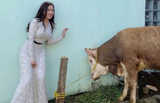 Ucie Sucita Pilih Berkurban di Kampung, Nih Alasannya - JPNN.com