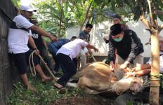 Pengalaman Pertama Fadli Zon Sembelih Hewan Kurban, Muncrat - JPNN.com