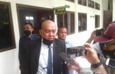Syamsul dan Hendra Masuk DPO, Achmad Tarmizi Kaget - JPNN.com
