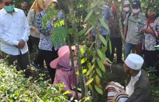 Kementan Bangkitkan Kembali Emas Hijau dari Salatiga - JPNN.com
