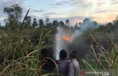 BMKG Peringatkan soal Kebakaran Hutan untuk Wilayah Ini - JPNN.com