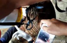 Pria di Sukabumi Ditemukan Tewas di Dalam Sumur - JPNN.com