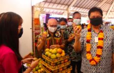 Berkunjung ke Desa Budaya di Bali, Menko Airlangga Berharap UMKM Lokal Segera Bangkit - JPNN.com