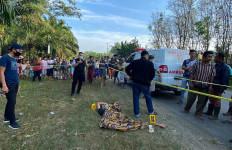 Nekat Melompat dari Truk Pengangkut Kayu, Janda Dua Anak Tewas Mengenaskan di Tepi Jalan - JPNN.com