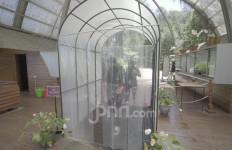 Kabar Gembira, Wisata Bandung Orchid Forest Cikole Mulai Bangkit di Era New Normal - JPNN.com