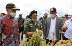 Mentan SYL Cek Kawasan Food Estate Humbang Hasundutan, Hasilnya? - JPNN.com