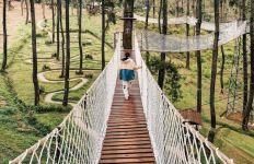 Asyik! Sambut HUT ke-3, Orchid Forest Bandung Beri Promo Tiket Masuk Kepada Pengunjung - JPNN.com