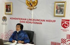 Menteri Siti Dorong Solusi Permanen Soal Karhutla - JPNN.com