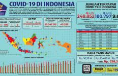 Covid-19 di Indonesia: Ini Sangat Mengerikan, Rekor Paling Buruk - JPNN.com