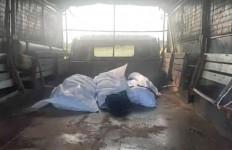 5 Mayat yang Ditemukan di Johor Malaysia Merupakan WNI, Ini Identitasnya - JPNN.com