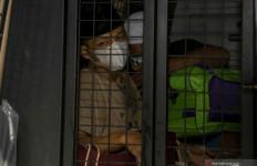 Anggota DPRD Palembang yang Ditangkap BNN Ternyata Residivis - JPNN.com