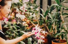Keren, 3 Wisata Taman Bunga di Bandung Ini Cocok Untuk Liburan Akhir Pekan - JPNN.com