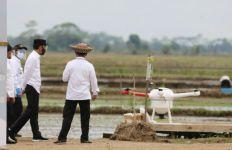 Presiden Jokowi Tinjau Percontohan Kawasan Food Estate Kalteng - JPNN.com
