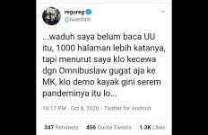 Iwan Fals: Kalau Kecewa Omnibus Law Gugat Saja ke MK - JPNN.com