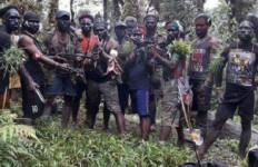 TNI: KKSB Terapkan Taktik Licik dan Korbankan Masyarakat Sipil - JPNN.com